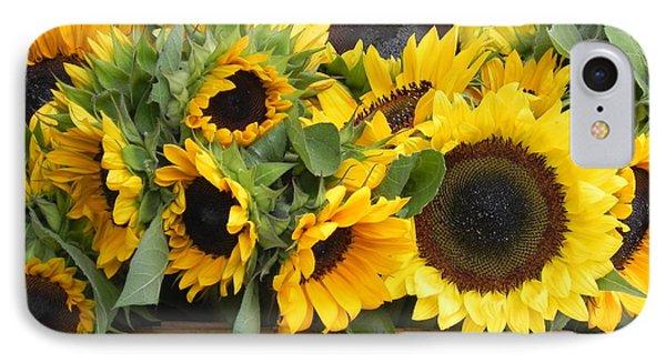Basket Of Sunflowers IPhone Case by Chrisann Ellis