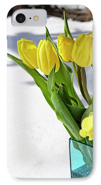 IPhone Case featuring the photograph Basking In The Sunshine by Traci Cottingham
