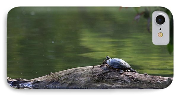 IPhone Case featuring the photograph Basking Turtle by Lyle Hatch
