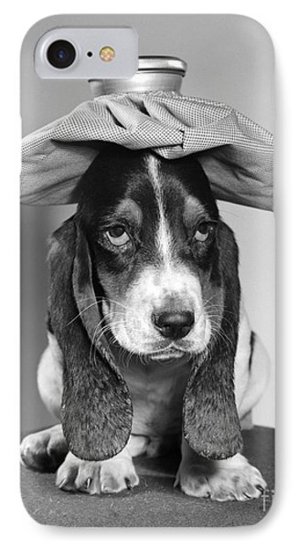 Basset Hound With Ice Pack IPhone Case