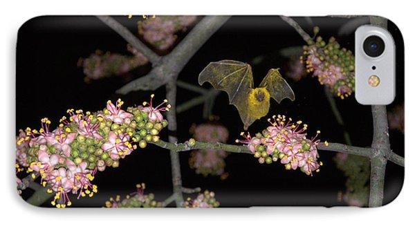 Bat IPhone Case by Jim Walls PhotoArtist