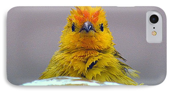 IPhone Case featuring the photograph Bath Time Finch by Lori Seaman