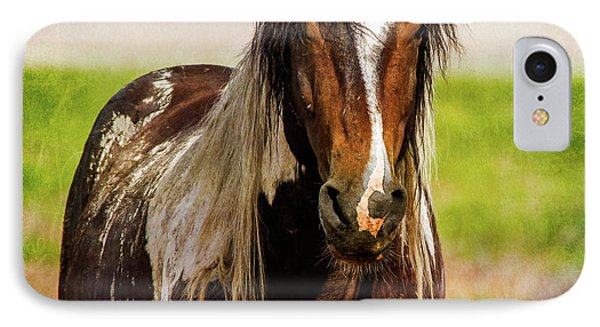 IPhone Case featuring the photograph Battle Worn Stallion by Mary Hone