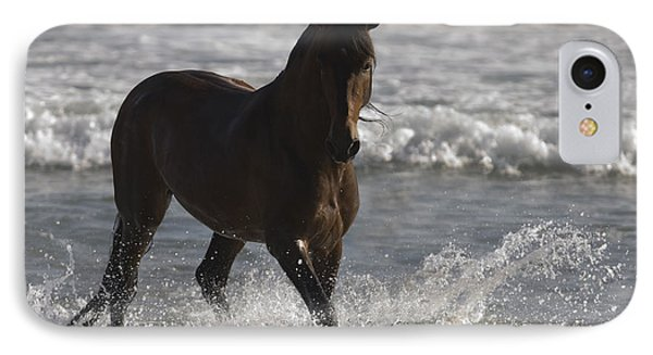Bay Andalusian Stallion In The Surf Phone Case by Carol Walker