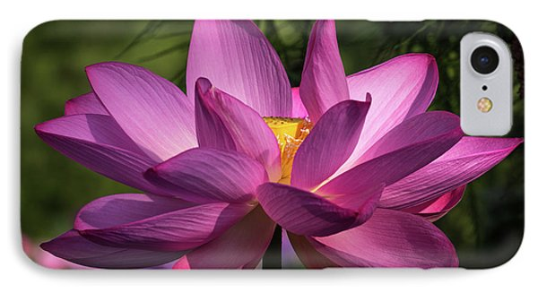 Be Like The Lotus IPhone Case
