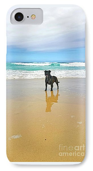 IPhone Case featuring the photograph Beach Dog And Reflection By Kaye Menner by Kaye Menner