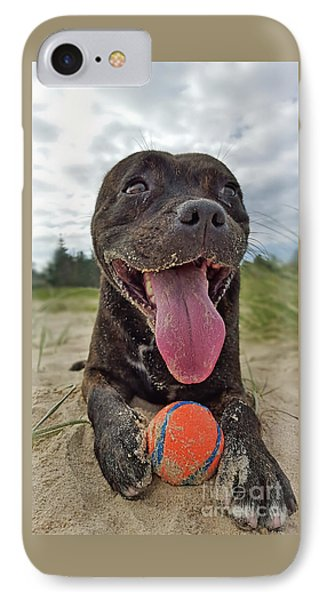 IPhone Case featuring the photograph Beach Dog - More Play? By Kaye Menner by Kaye Menner