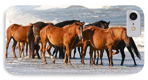 Beach Ponies IPhone Case by Robert Och