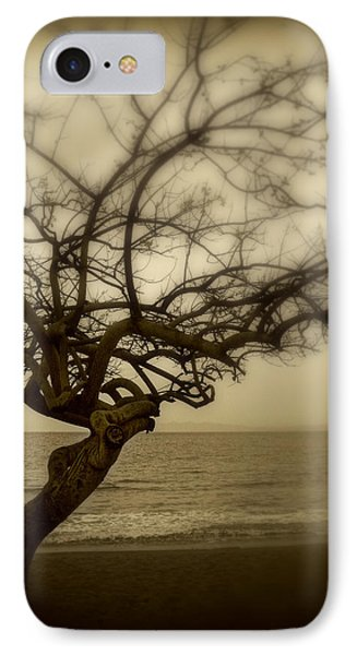 Beach Tree IPhone Case by Perry Webster