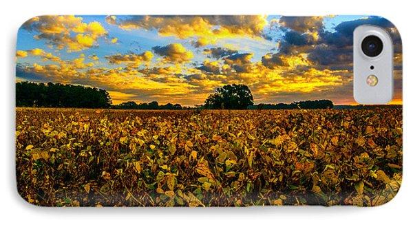 Bean Field Splendor  IPhone Case by John Harding