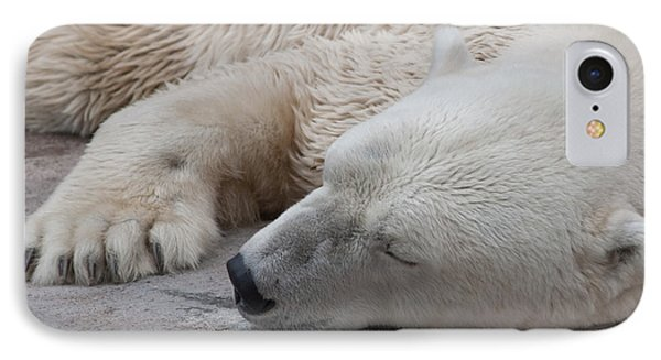 IPhone Case featuring the photograph Bear Nap by Cindy Haggerty