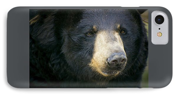 Bear With Me IPhone Case by Cheri McEachin