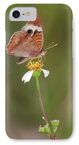 Beautiful Buckeye IPhone Case