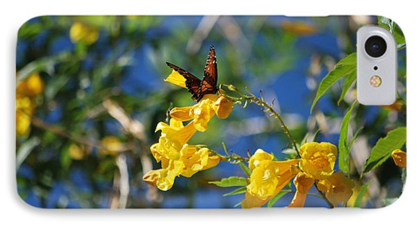 IPhone Case featuring the photograph Beautiful Butterfly by Donna Greene