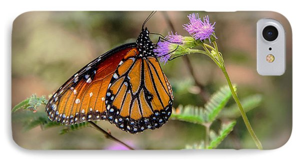 IPhone Case featuring the photograph Beautiful Butterfly by Elaine Malott