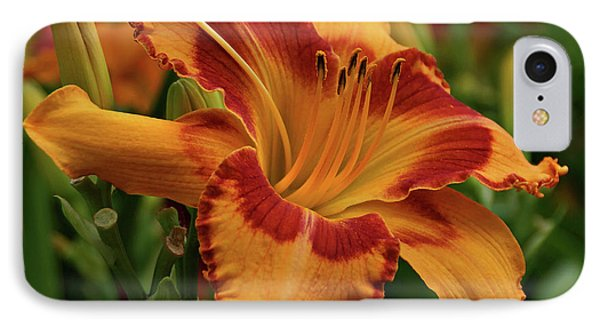 IPhone Case featuring the photograph Beautiful Daylily by Sandy Keeton