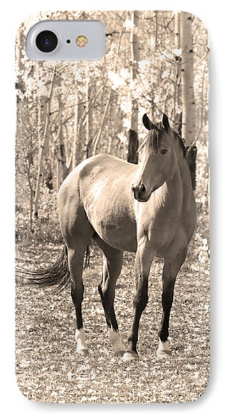 Beautiful Horse In Sepia Phone Case by James BO  Insogna