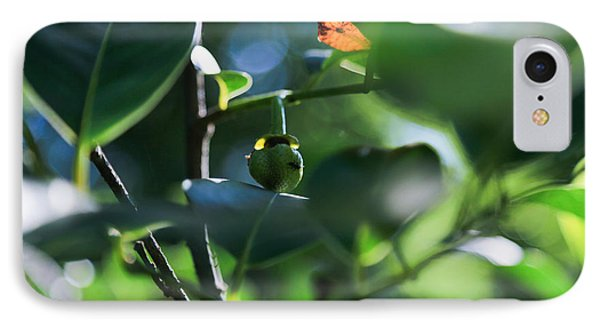 Beautiful Nature IPhone Case by Christopher L Thomley