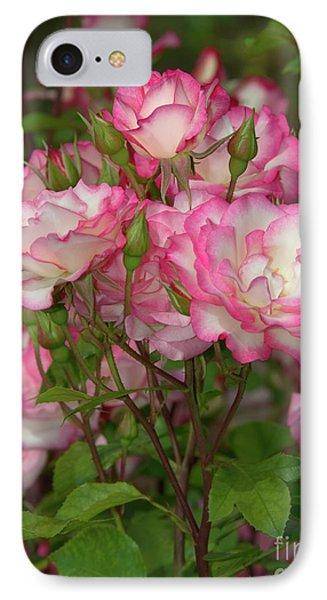 Beautiful Nicole Roses Lighter IPhone Case