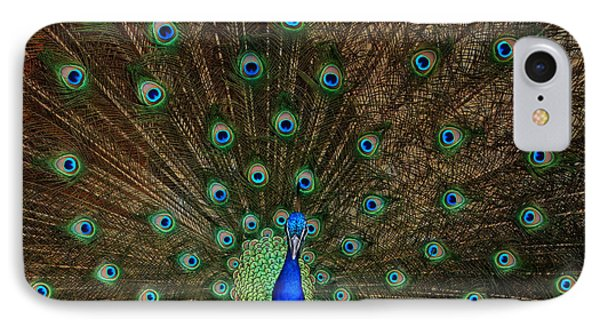 Beautiful Peacock IPhone Case by Larry Marshall