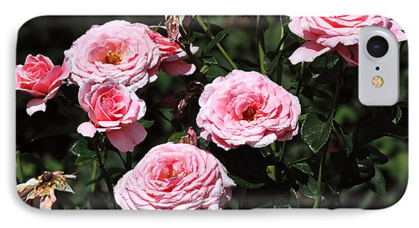 Beautiful Pink Rose L'aimant Phone Case by Louise Heusinkveld