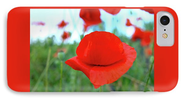 Beautiful Poppy IPhone Case by Nat Air Craft