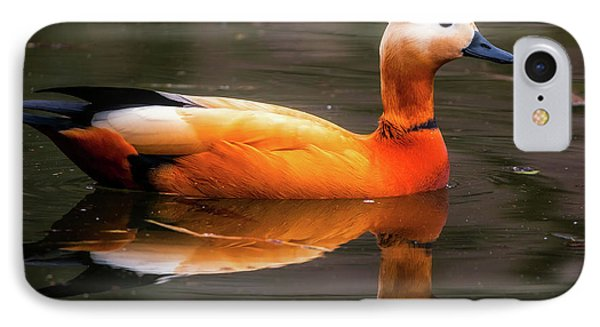 IPhone Case featuring the photograph Beautiful Rust Goose by The 3 Cats