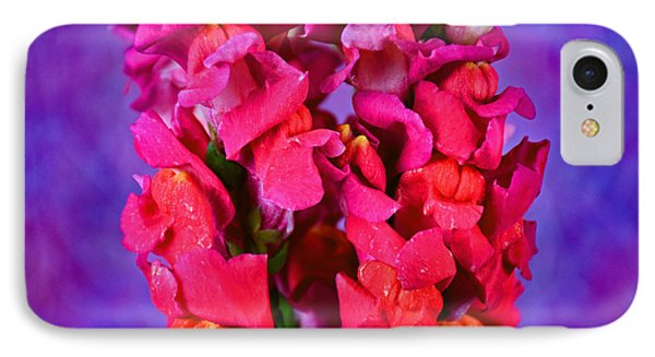 Beautiful Snapdragon Flowers IPhone Case by Ray Shrewsberry