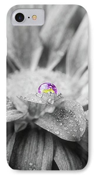 Beautiful Splash Of Purple On A Daisy In The Garden IPhone Case