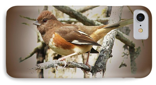 Beautiful Towhee IPhone Case