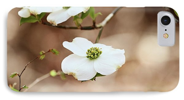 IPhone Case featuring the photograph Beautiful White Flowering Dogwood Blossoms by Stephanie Frey