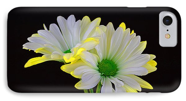 Beautiful Wonder IPhone Case by Ray Shrewsberry