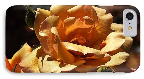 Beautiful Yellow Rose Belle Epoque Phone Case by Louise Heusinkveld