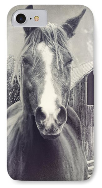 Beauty And The Barn IPhone Case