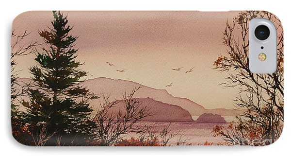 IPhone Case featuring the painting Beauty At The Shore by James Williamson