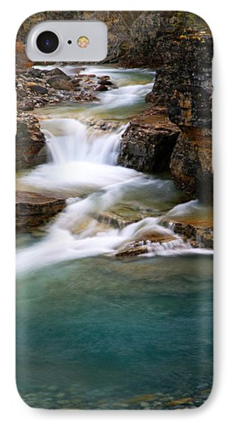 Beauty Creek Cascades Phone Case by Larry Ricker