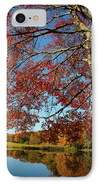 IPhone Case featuring the photograph Beauty Of Fall by Karol Livote