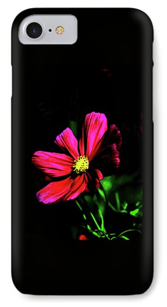 IPhone Case featuring the photograph Beauty  by Tom Prendergast