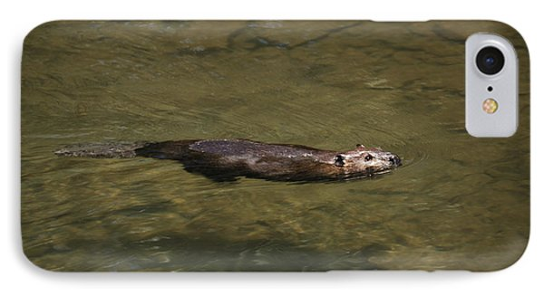 Beaver Swim IPhone Case