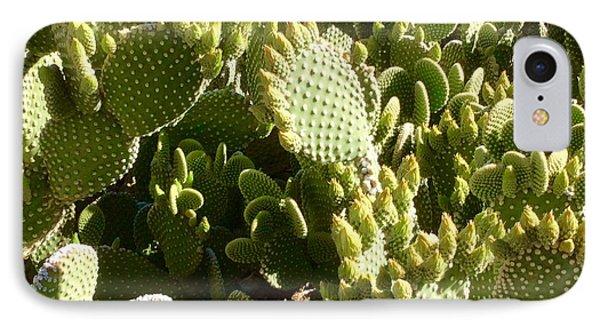 Beaver Tail Cactus, Cave Creek, Arizona IPhone Case