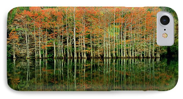 Beaver's Bend Cypress All In A Row IPhone Case
