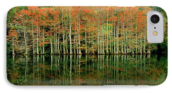 Beaver's Bend Cypress All In A Row IPhone Case by Tamyra Ayles