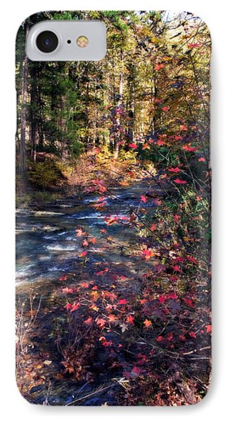 Beavers Bend IPhone Case by Lana Trussell
