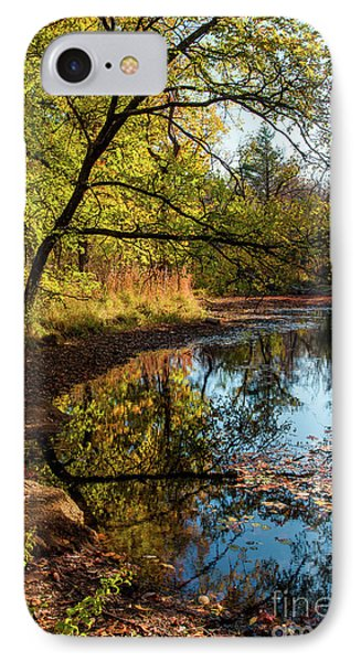 IPhone Case featuring the photograph Beaver's Pond by Iris Greenwell