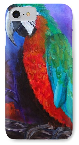 Becky The Macaw IPhone Case by Jenny Lee