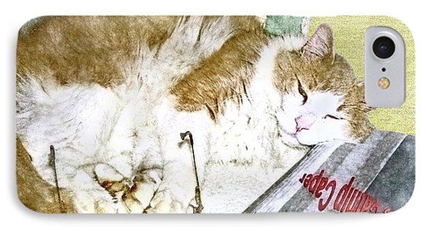 Bedtime Cat IPhone Case by Susan Leggett