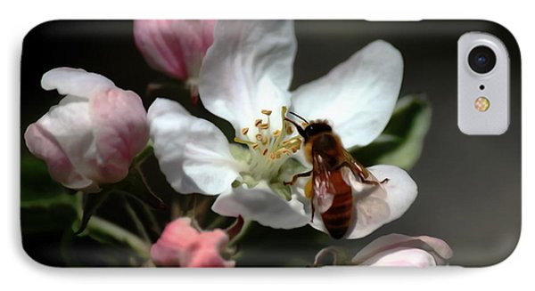 Bee And Blossom IPhone Case by Erica Hanel