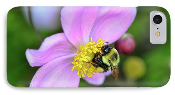IPhone Case featuring the photograph Bee And Japanese Anemone by Kerri Farley