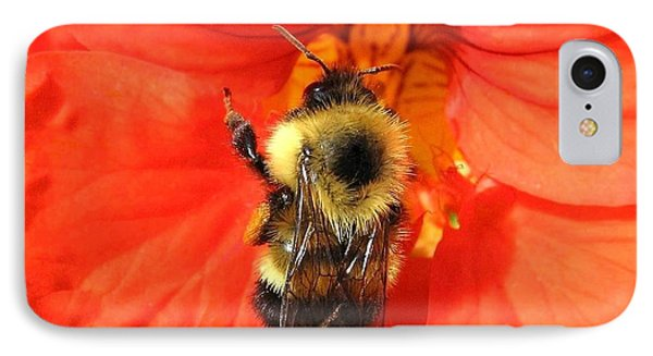 Bee And Nasturtium Phone Case by Will Borden