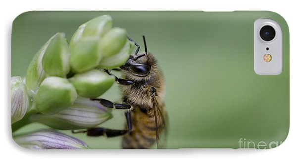 Busy Bee Phone Case by Andrea Silies